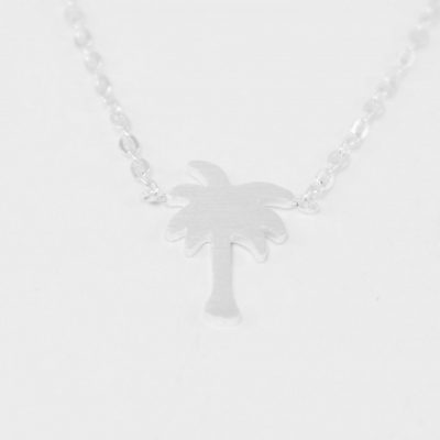 palmier arg (3)